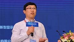2019海峡两岸(成都)新型显示产业高峰论坛——于宁宁(速记)